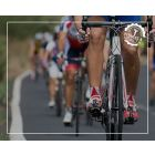 Triathlon Training Programs (Mettle Multisport)